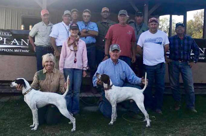 Southern field trial amateur 2018