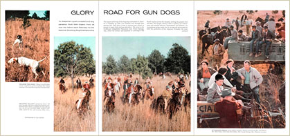 Glory Road for Gun Dogs story